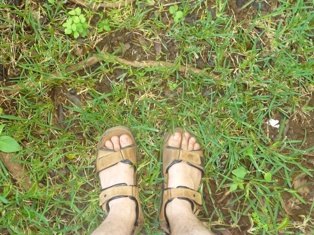 Deutsche Füße