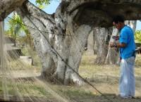 Fischer in Puntarenas