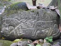 Steinzeichnungen im Centro Neotrópico SarapiquíS