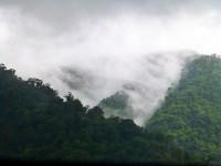 Nebelwald im Tapantí-Nationalpark