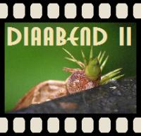 Diaabend II - Turrialba