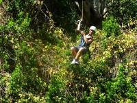 """Tabea """"fliegt"""" durch den Regenwald"""