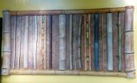 Übersicht über verschiedene Bambusarten