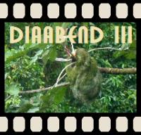 Diaabend III - Cahuita und Guápiles