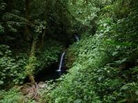 Wasserfällchen in Monteverde