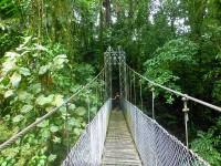 Eine von 14 Arenal-Hängebrücken