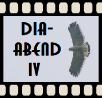 Diaabend IV - La Fortuna